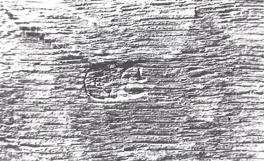 Fig. 7 - Ingeslagen paneelmakersmerk van Guilliam Gabron (foto: J. Wadum , Kopenhagen).